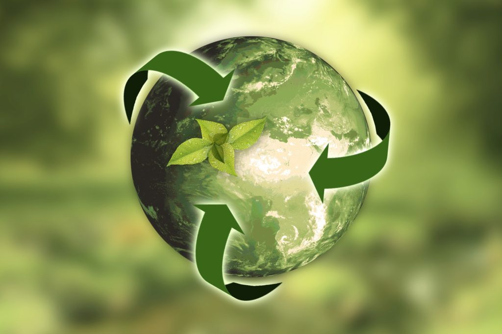 reduce your carbon footprint and go green