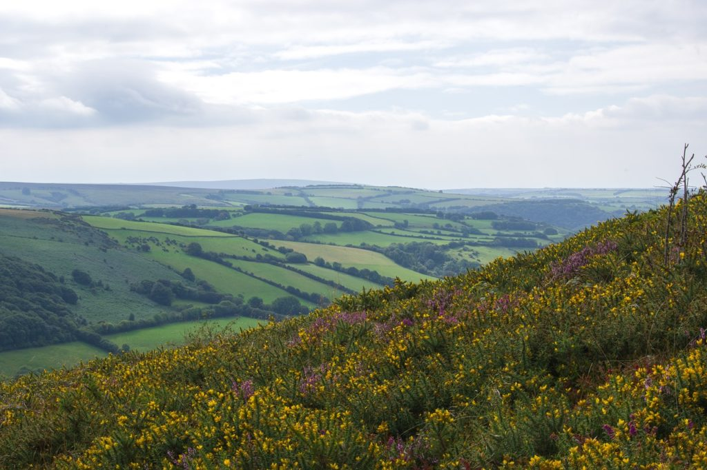 rural property developers, Exmoor, Somerset